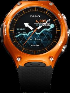 CasioWSD-F10